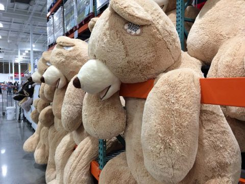 Costco Bear Plush