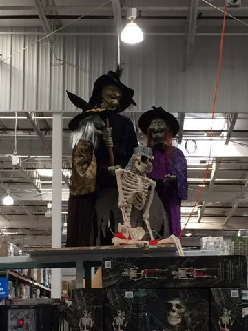 costco-halloween-witches
