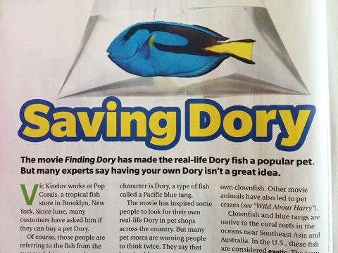 scholastic-news-saving-dory-sep-16